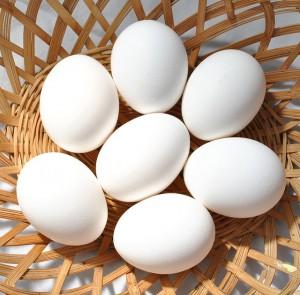 eggs-570540_640